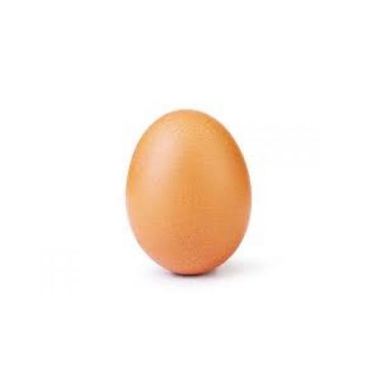 Organic Roaming Chicken Egg